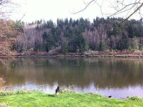 john day county park sophie